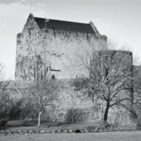 Athenry Castle Green